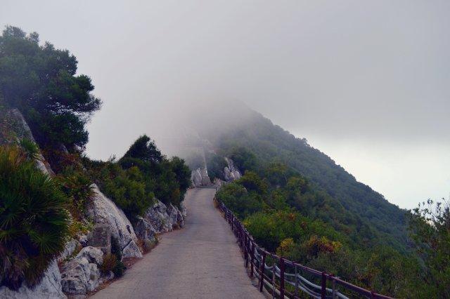 Gibraltar Fog